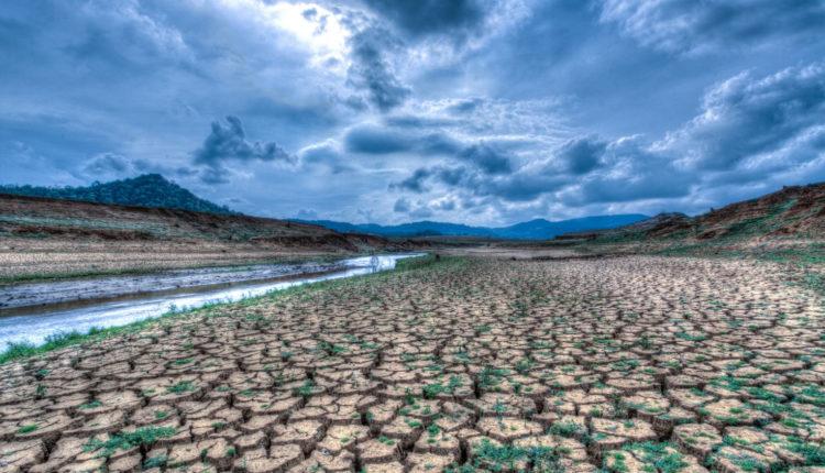 A cégek fele már érzi a klímaváltozást a pénzügyi eredményeiben – Portfolio