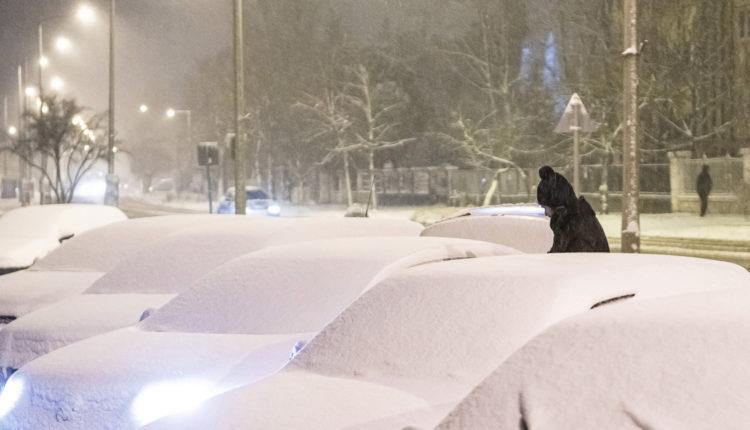 Kiadták a figyelmeztetést Budapestre és 9 megyére a nagy havazás miatt – Portfolio