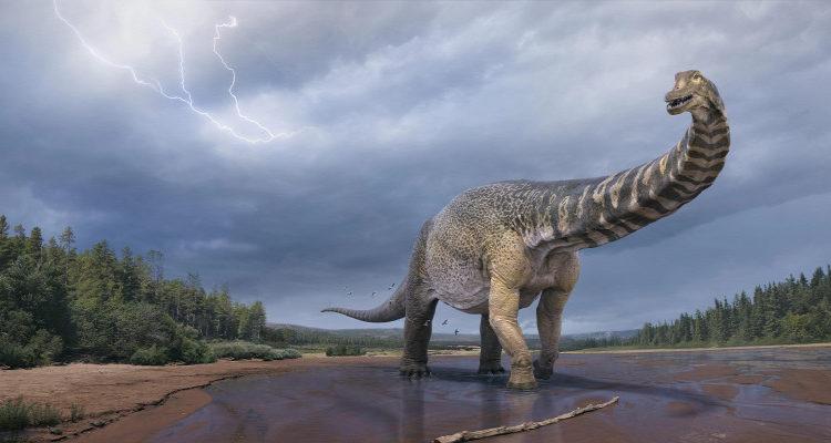 Harmincméteres óriást fedeztek fel Ausztráliában – Origo