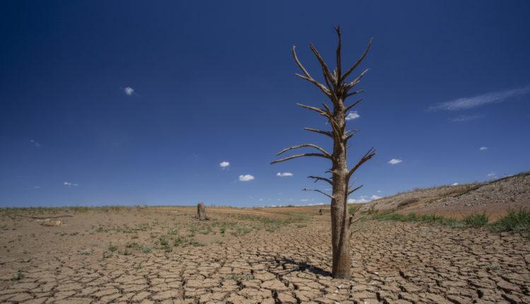 Hőhullámok miatti halálozás: sokkal többen halnak meg a hideg, mint a meleg miatt – Portfolio
